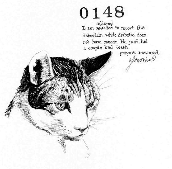 Sebastian 148
